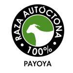 Raza autóctona Payoya 100%
